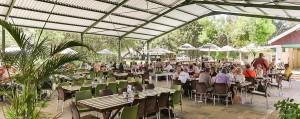 safari-ostrich-farm-restaurant-oudtshoorn-south-africa