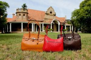 safari-ostrich-farm-ostrich-leather-handbag-shop-oudtshoorn-garden-route-south-africa-9